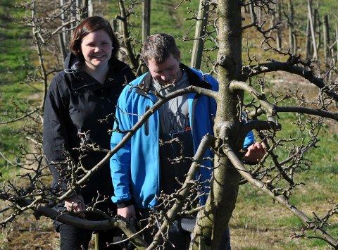 TRENG FOLK I JUNI: Anne Norunn Helgøy og mannen, Kristen, driv med frukt på Helgøy. Det kan bli ei utfordring å få tak i arbeidsfolk når det skal tynnast i trea i juni.
