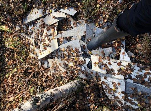 Dumpa i vegkanten: Knuste eternittplater vart funne i naturen i Skammestein. No er det fjerna.