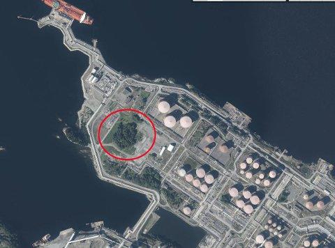 HER SKAL DEI BYGGA: Det er i dette området ein skal byrja bygginga på land i samband med Johan Sverdrup-utbygginga på Statoil Mongstad sitt område.