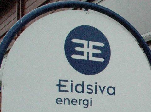 Muskler: Fylkenes aksjer i Eidsiva, er en viktig del av Innlandet fylkeskommunes muskelmasse.