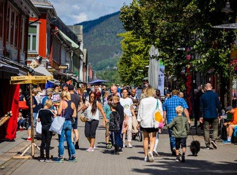 DEMOKRATI: Lillehammer kommune oppfordrer innbyggere til å gi innspill på politiske saker via en app. Jørund Hassel mener det er betenkelig.