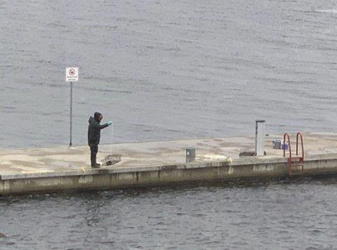 Teinefiske på bølgebryteren: Dette er ikke forbudt, men de samme reglene som gjelder for fiske fra båt, gjelder også her. Alle teiner må merkes tydelig med navn og adresse. Er det hummerteiner må du i tillegg være påmeldt årets fiske.foto: Bjørn Eckhardt