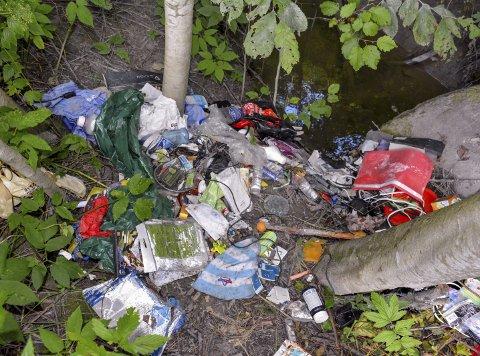 DUMPET SØPPEL VED BEKK: Ukjente personer har dumpet søppel i en skråning ned mot et bekkefar, like ved der bekken renner ut i Lierelva.