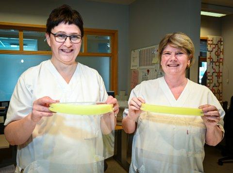 Til nå er det blitt minst 250 visir, til bruk ved sykehuset i Rana, produsert av egne ansatte. - Det enkle er ofte det beste, sier sekretærene Marianne Holt (t.h.) og Torhild Holmstrand.