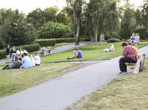 I noen uker har Nordre Park så å si vært fylt med unge mennesker som spiller Pokémon Go. – Det er ikke bare unge som spiller. Her om dagen kom jeg i samtale med ei på 61 år, forteller Mats Tangen Dammen.