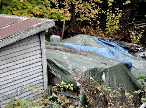 INNSYN: Slik er utsynet fra terrassen og inn på nabotomta der Kari M Wiik i Holstadåsen bor sammen med svigerdatter sønn og barnebarn.