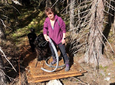 I SKOGEN: –  Hvem har ansvaret for å fjerne denne rustne grinda, spør Helle Lehnert fra Roa.
