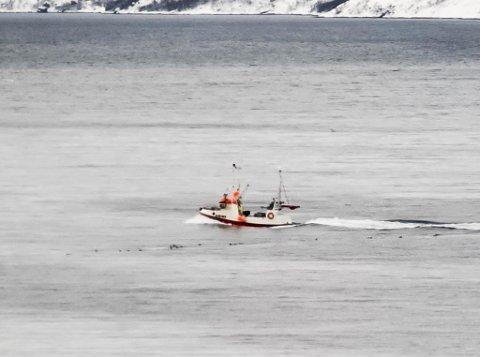 FULLE BÅTER: Det rapporteres om godt fiske på Lopphavet. Dette bildet er tatt av en fiskebåt på vei inn til mottaket i Øksfjord.