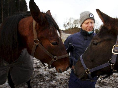 HESTEMANN: Stein Ivar Kløven har talent for hest. arkivfoto: jarl rehn- erichsen