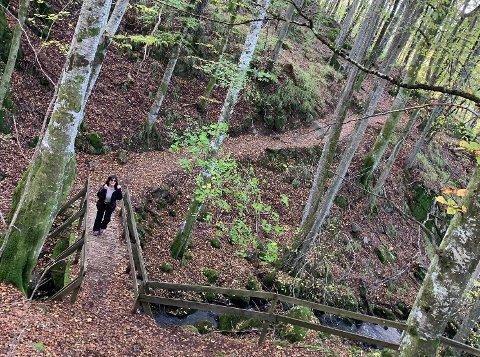 VAKRE STIER: Vestmarka byr på merkede turer av forskjellig lengde.