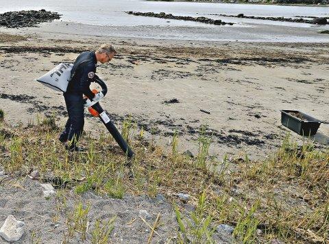 Slik gjøres det: Støvsuger og løvblåser blir brukt for å suge opp kulene.