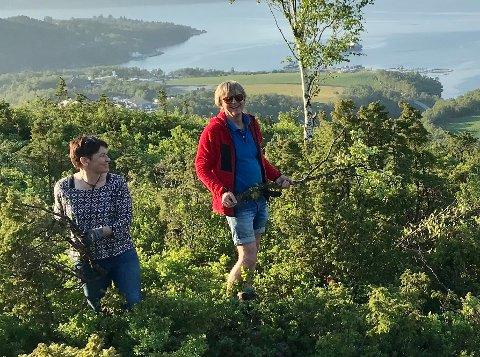 DUGNAD: Svanhild Hjorteland Gbada og Nils Viga Hausken konstaterer at utsynet er vidt frå Borgaråsen.
