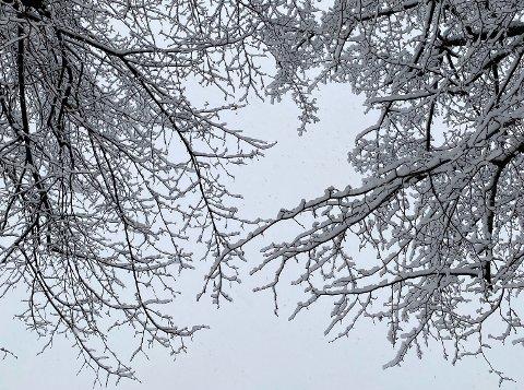 PYNTER OPP: I løpet av helgen har det kommet et lite dryss med snø, og i følge meteorologen blir det liggende en stund.