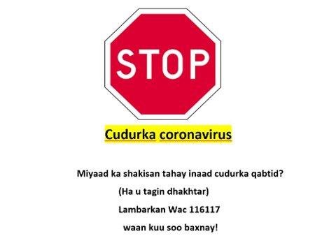 Dette er det SVs Marian Hussein klarte å finne av informasjon på somali på Molde kommunes nettsider. Plakaten ble lagt ut i mars 2020.