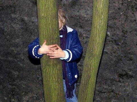 Av de 637 meldingene til barnevernet i Bodø i fjor, handlet 243 om vold.