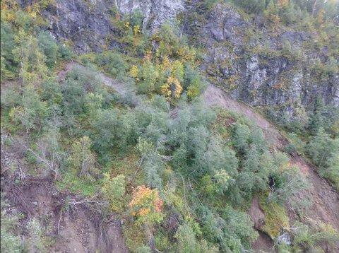 Bildet viser øverste «sleppa» i det skredutsatte området ved Teigen.