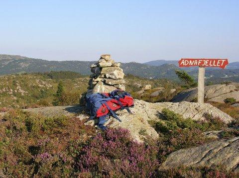 FIN TUR: Den flotte utsikten fra toppen av Ådnafjellet er en positiv overraskelse for turgåerne.