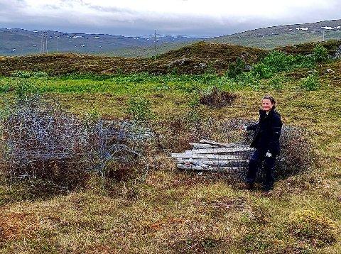 STORE MENGDER: Sommervikar Stine Lovise Sandør Rakkenes med store mengder gjerde med piggtråd som hun og Matti Eira nylig fjernet ved Risvika. - Piggtråden kan være farlig både for dyr på beite og for folk på tur, sier Rakkenes.