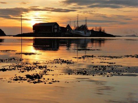 Sjåholmen ligger idyllisk til, kun 50 meter fra Onøya.