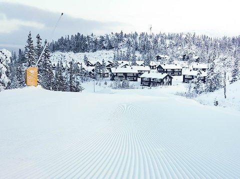 FORHOLDENE FREDAG KVELD: Alik ser det ut i terrenget på Gaustablikk nå. Så spenn på skia i helga!