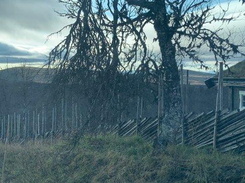 VINGELEN: Fra Knausvola hyttefelt i Vingelen. Arkivfoto.
