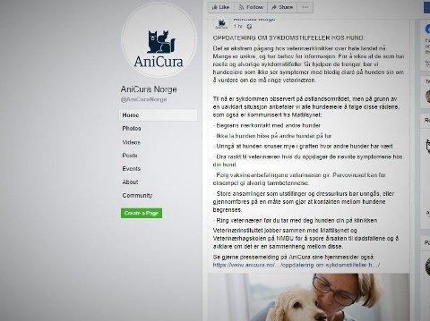SLO ALARM: Veterinærkjeden Anicura var først ute med å slå alarm om sykdomsutbruddet. Torsdag melder de om minst 20 døde hunder som de knytter til det pågående utbruddet. Foto: Faksimile