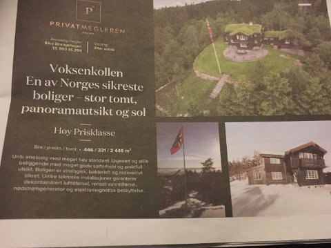 Boligen ble annonsert i Dagens Næringsliv lørdag.
