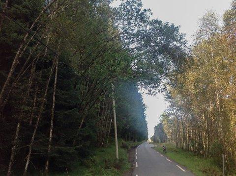 VEGARBEID: Fylkesveg 611 mellom Vevring og Stavang. i Sunnfjord skal få opp mot 900 tonn med ny asfalt.
