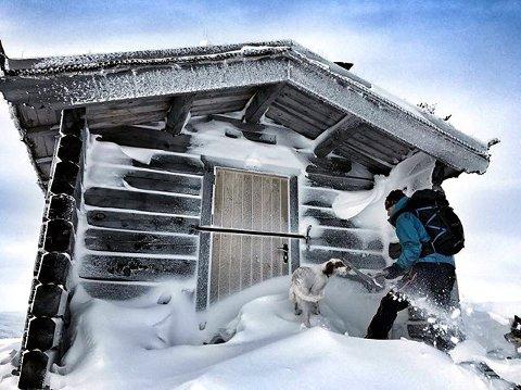 – Vågå leverer: Hverdagslykke med snø og vinter i Vågå. foto: Heidi Lillebråten