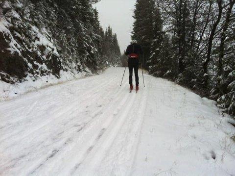 LØYPER: Det er kjørt opp løyper på Mylla, noe som har blitt godt mottatt av skigåerne. Foto: Arild Bernstrøm