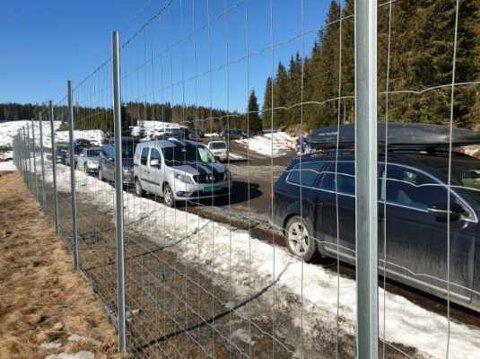 SKITURISTER: Mange trosset myndighetenes advarsler og reiste ut av egen kommune. På Brovoll, Mylla og Svartbekken var det fullt på parkeringsplassene lørdag.