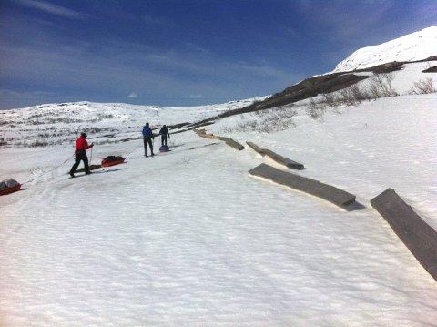 Disse stokkene skal bidra til at sjansen for å gå tørrskodd fra Storelva til Orrekvatn øker betraktelig.   Foto: Rune Pedersen