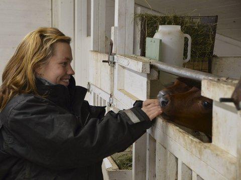 Fornøyde kalver: Kalvene i fjøset hos Hanne Harila får god pleie og omsorg, og er nok blant de få i landet som ligger på varmekabler.