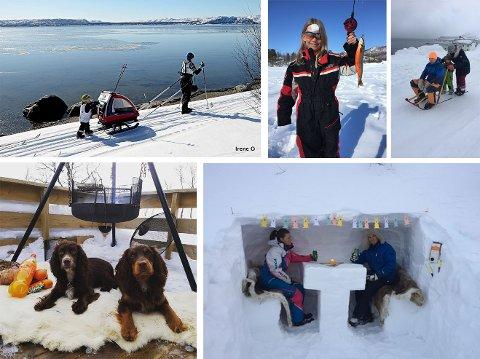 VINNERE: De fem vinnerne av vår påskekonkurranse er Irene Ojala, Linn Merete Lebesbye-Isaksen, Hanne Ollila, Tora Gundog og Juliette Olsen.