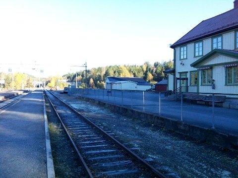 MISFORNØYDE PENDLERE: Neslandsvatn er den nærmeste togstasjonen for innbyggerne i Kragerø. (Arkivfoto: Trond Nøstvold Tou)