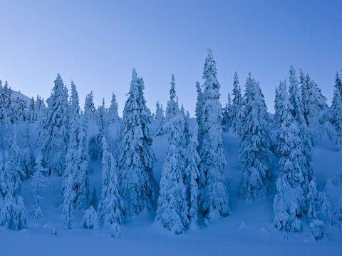 Knutefjell har svært store natur- og kulturverdier som det er viktig å sikre både for dagens og framtidas generasjoner.