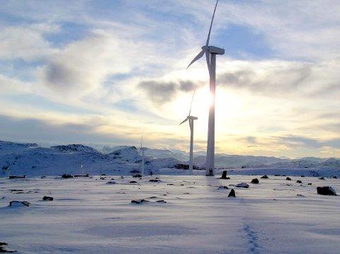 Kraftsikring: Østfold Energi tar grep for å sikre alle sine kraftleveranser.