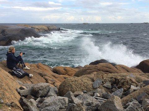 Glad i naturen: Det siste året har Ann Kristin Hynne Green også blitt glad i å fotografere natur. Her fra Folehavna på Vesterøya i Sandefjord.
