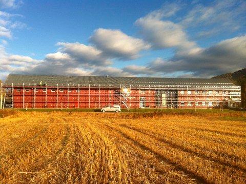 FLYTTES HIT?: Høgskolens landbruksutdanninger kan bli flyttet hit til Evenstad. (Foto: Per Anders Westgård)