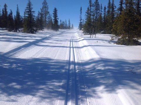 Snart kan du gå på ski: Nore og Uvdal kommune har vedtatt flere nye endringer på løypenettet. Til vinteren vil det være flere nye løyper og noen endringer på allerede eksisterende løypenett.