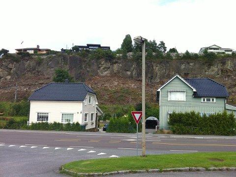 HUGD NED: Kalklindeskog er en av de sjeldneste naturtypene i Norge, og anses som truet. Nå har Bane Nor fjernet et stort område med slik skog på Bøle.