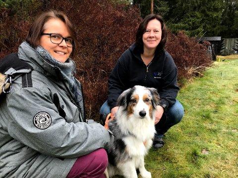 """Sigyn Birkeland og """"Ifa"""" fra Ås drar Veterinær Kristin Halle ved Logreklinikken i Frogn når """"Ifa"""" har det vondt. Amta ble med på en behandling."""