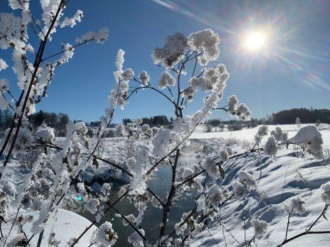 Iskaldt: Det ble målt både -15,5 og - 18, 5 grader ved Bakker bru søndag morgen. Foto: Ivar Ruud Eide