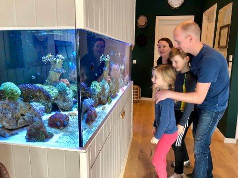 Spennende: Hele familien er glad i det levende bildet som lyser opp i stua. Også kona Monica og barna Emil (9) og Pernille (6) kan mye om akvarieliv.