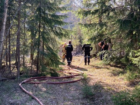 2. påskedag måtte brannmannskapene på Nesodden rykke ut på en skogbrann  midtre Granerud sør på Nesodden Foto: Ivar Ruud Eide