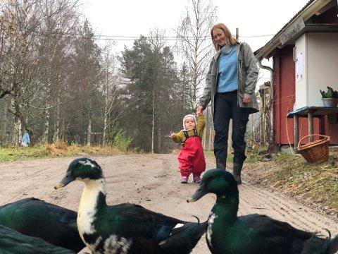 Gårdshjelp: Denne ande-rasen har en slimete favoritt-rett. De kan glede seg til våren.  Sara Leinaas og lille Margot synes det nye tilskuddet på gården er stas.