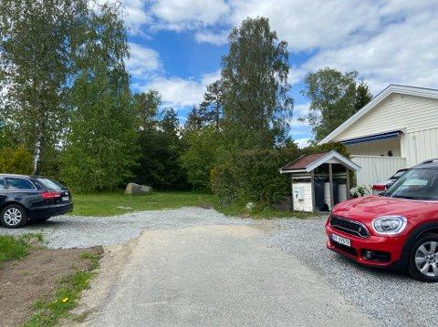 HER: Det er deler av denne skogen ved Tryms vei på Heer Jan Tore Pedersen ønsker å kappe ned. FOTO: Ole Jonny Johansen