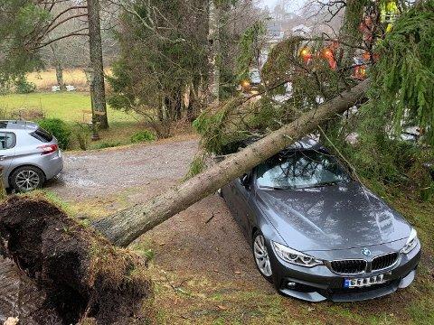 VARSLER STORE VINDKAST: Dette bildet er tatt i Drøbak i februar. Nå er det varslet mer uvær torsdag. Både Elvia og meteorologene ber folk passe ekstra på nå.