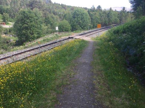 Rørosbanen har flere usikra planoverganger på strekningen.