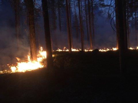 Flammene som stiger opp fra bakken er som tatt rett ut fra Helvete.